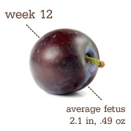 Week 12 Pregnancy Recap