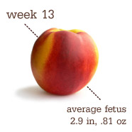 Week 13 Pregnancy Recap